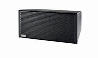 E11EVEN ES-10, passive 2-way point source/array speaker