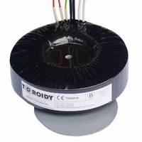 TOROIDY TTSA0300, Audio Grade toroidal transformer