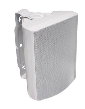 Fixed mount speakers, 100V